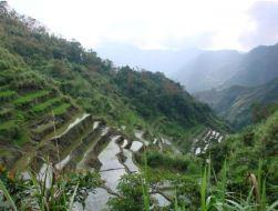 2018-12-27 00_35_54-Hoogtevrees tussen de rijstvelden - Reisverslag uit Sagada, Filipijnen van YFR -