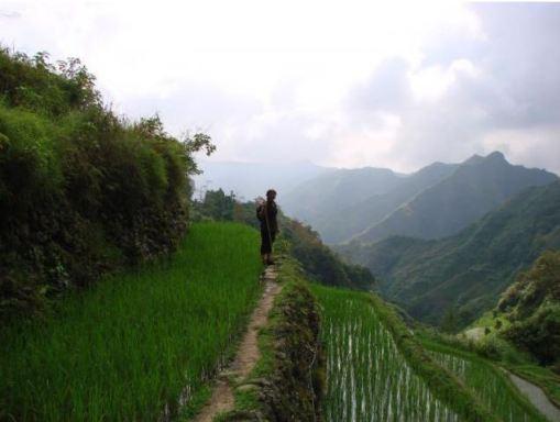 2018-12-27 00_36_12-Hoogtevrees tussen de rijstvelden - Reisverslag uit Sagada, Filipijnen van YFR -
