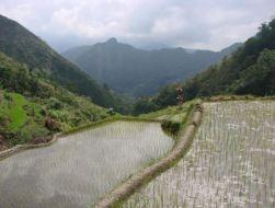 2018-12-27 00_36_43-Hoogtevrees tussen de rijstvelden - Reisverslag uit Sagada, Filipijnen van YFR -