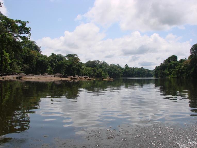 3. Boven Suriname - Suriname Rivier (2)