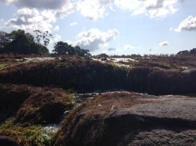 3. Boven Suriname - Tapawatra sula 4