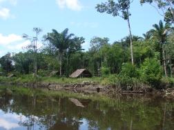 5. Cottica rivier (11)