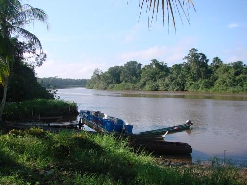 5. Cottica rivier (12)