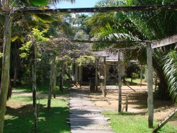 6. De Plantage - Oost west verbinding 1