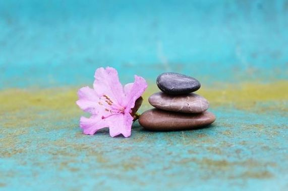 himalaya-vitality-day